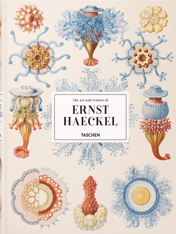 the art and science or ernst haeckel