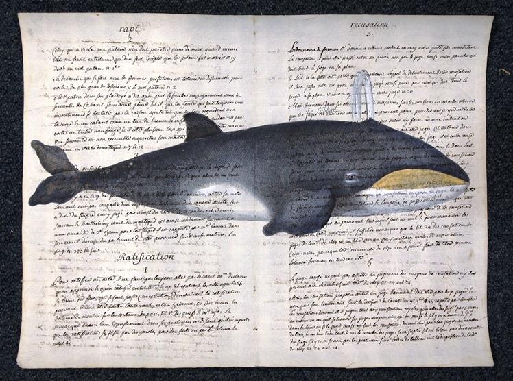 balena su carta antica
