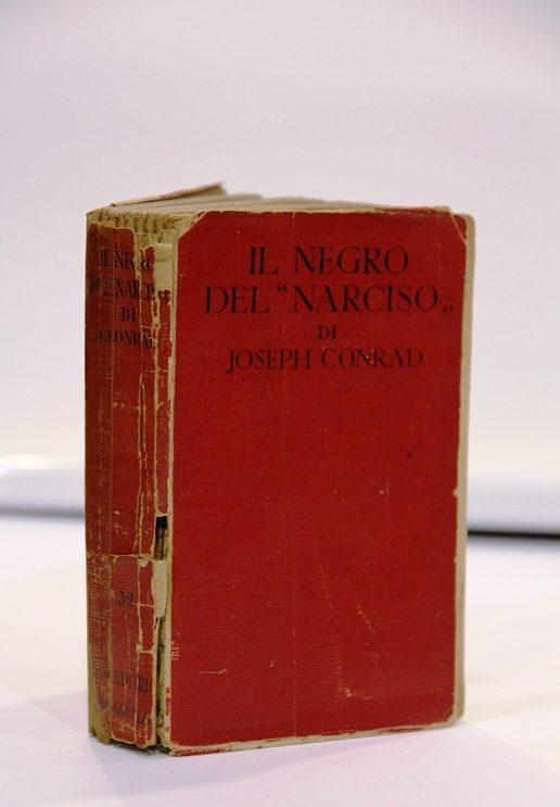 """il negro del """"narciso"""""""