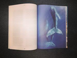 Rivista Sirene Journal La Libreria del Mare, Milano